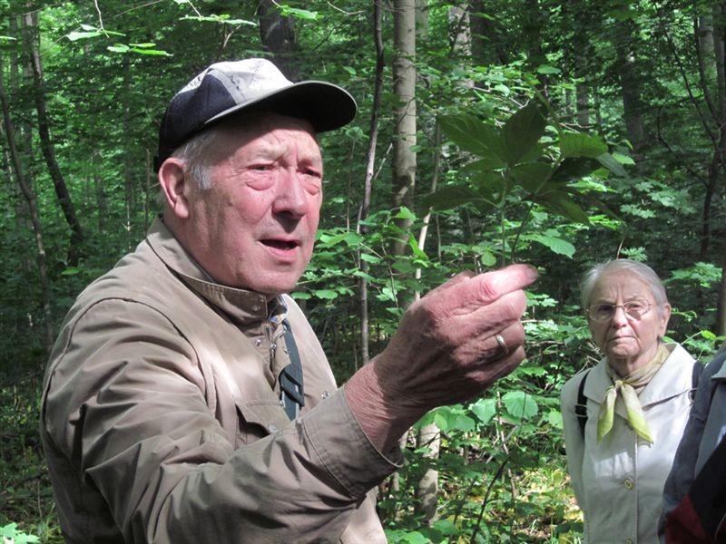 Zu jeder Pflanze hat Dr. Gutte interessante 'Zusatzinformationen'. Er verrät, dass das Wald-Bingelkraut seinen deutschen Namen seiner harntreibenden Wirkung verdankt, denn 'Bingelkraut' bedeutet nichts anderes als 'Pinkelkraut'.<p/>Foto: Sabine Stelzner