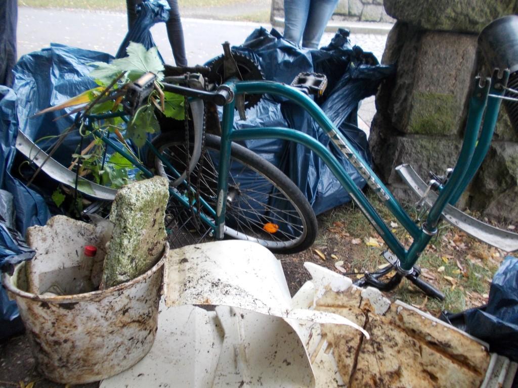 Sogar ein altes Fahrrad wurde aus dem Wasser gezogen.</p>Foto: René Sievert