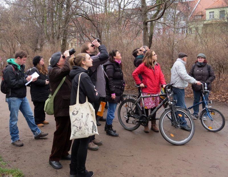 Am Sonntag führte eine NABU-Exkursion zur Stunde der Wintervögel in den Bretschneiderpark. Foto: Karsten Peterlein