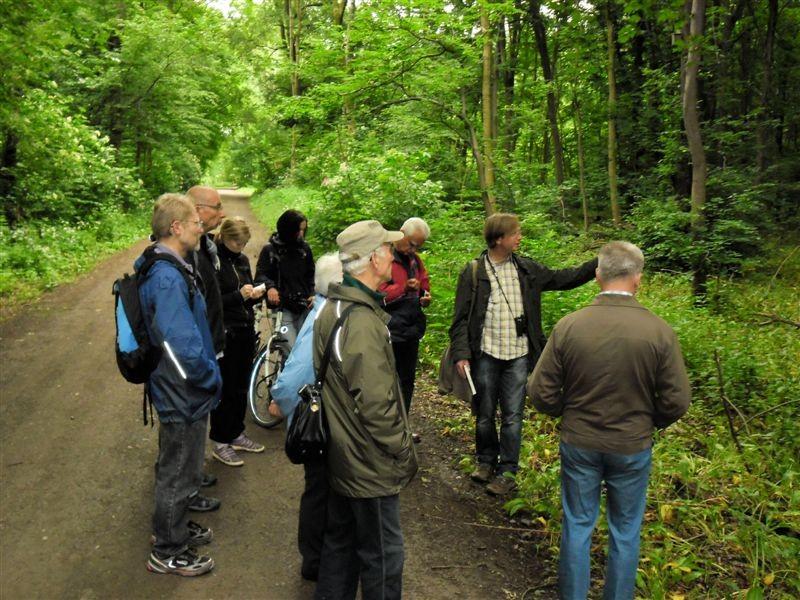 Am Montag führte Hendrik Teubert vom Hellriegel-Institut der Hochschule Anhalt (2.v.r.) eine Exkursion durch die Burgaue. Dabei ging es um Geschichte und Zukunft der Waldwirtschaft.<p/>Foto: René Sievert