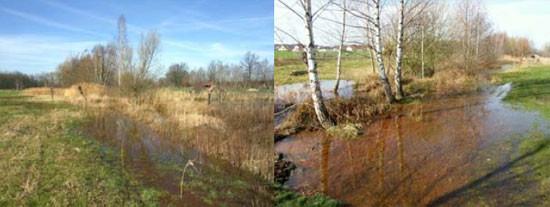 Erste mit Eisenhydroxid reiche Hochwasserwelle in der Saubachaue am 13.03.2007