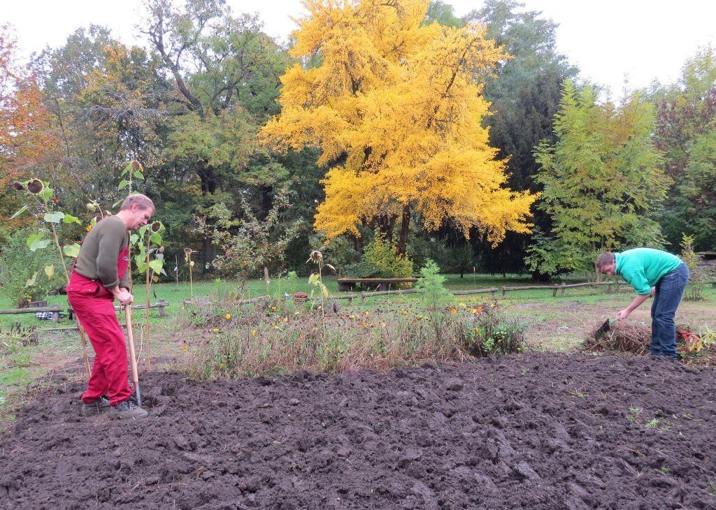 Wolfgang Kulick und Max Meissner vom NABU Leipzig haben im Schulgarten eine Fläche umgegraben.