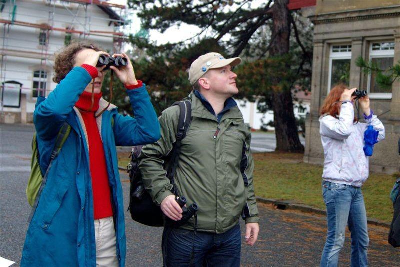 Vom trüben Wetter ließen sich die Vogelfreunde nicht abhalten. Die Beteiligung an der Stunde der Wintervögel war in ganz Deutschland höher als im Vorjahr.