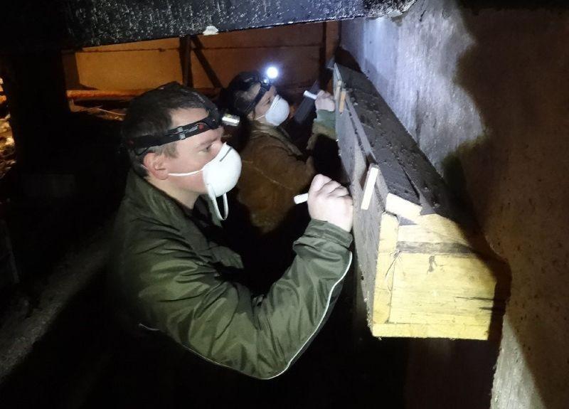 <p>Die Arbeit auf den staubigen Dachböden ist sehr anstrengend; Atemschutz ist notwendig, teilweise wird nur beim Schein von Stirnlampen gearbeitet.</p>Foto: Silvia Fischer