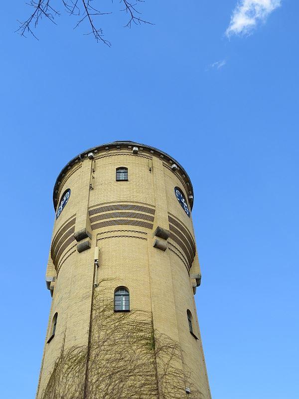 In diesem Jahr ist auch der Nistplatz im Wasserturm Böhlitz-Ehrenberg besetzt.