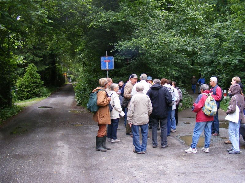 Der Botaniker Dr. Peter Gutte führte am Dienstag eine Exkursion durch den südlichen Auwald.<p/>Foto: Matthias Fitzke