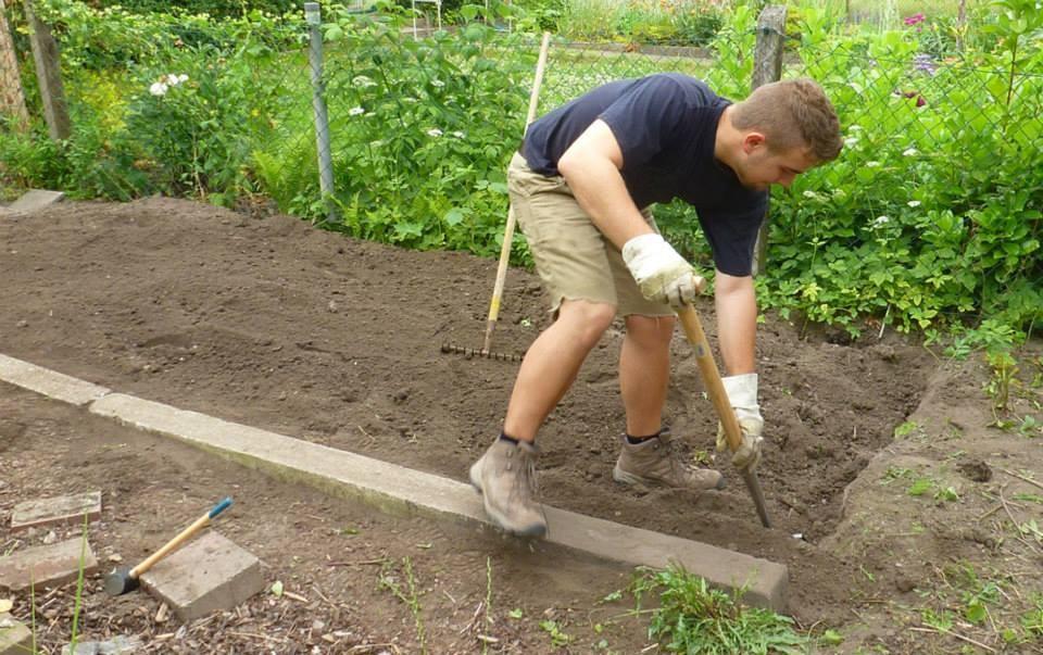 NAJUs im Einsatz, damit der Garten schnell voran kommt. Ihr seid herzlich eingeladen, mitzumachen!