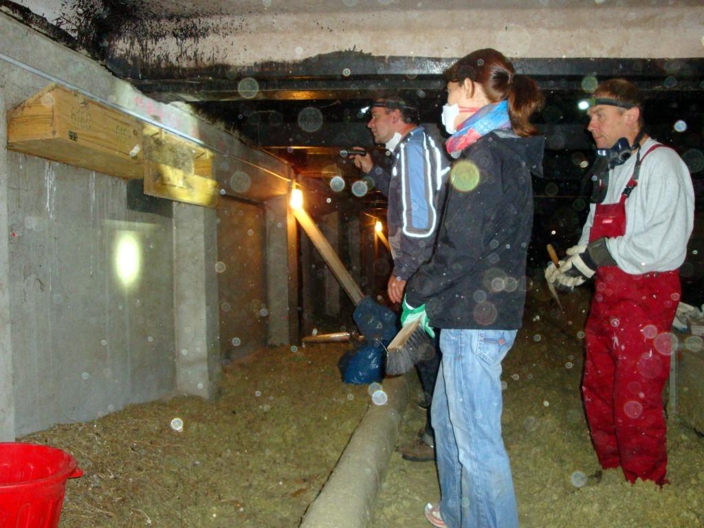 Ausgerüstet mit Atemschutzmasken und strapazierfähiger Bekleidung versammelten sich die freiwilligen Helfer auf dem staubigen Dachboden ...</p>Foto: Jan Kockrow