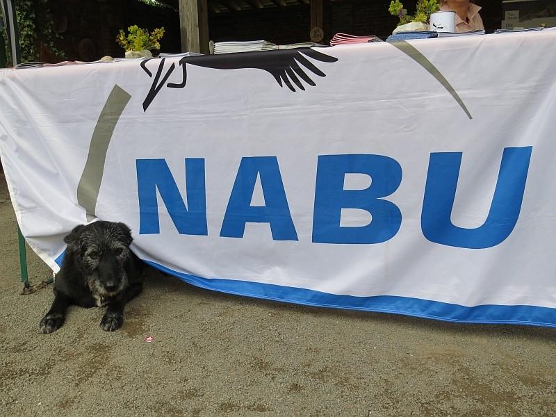 Der NABU-Infostand war auch für vierbeinige Naturfreunde attraktiv.