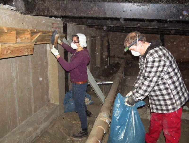 Der Arbeitskreis Vogelschutz betreut Mauerseglernistkästen, die gereinigt und repariert werden - eine staubige, körperlich anstrengende Arbeit auf Dachböden in Grünau und anderen Stadtteilen.</p>Foto: Karsten Peterlein