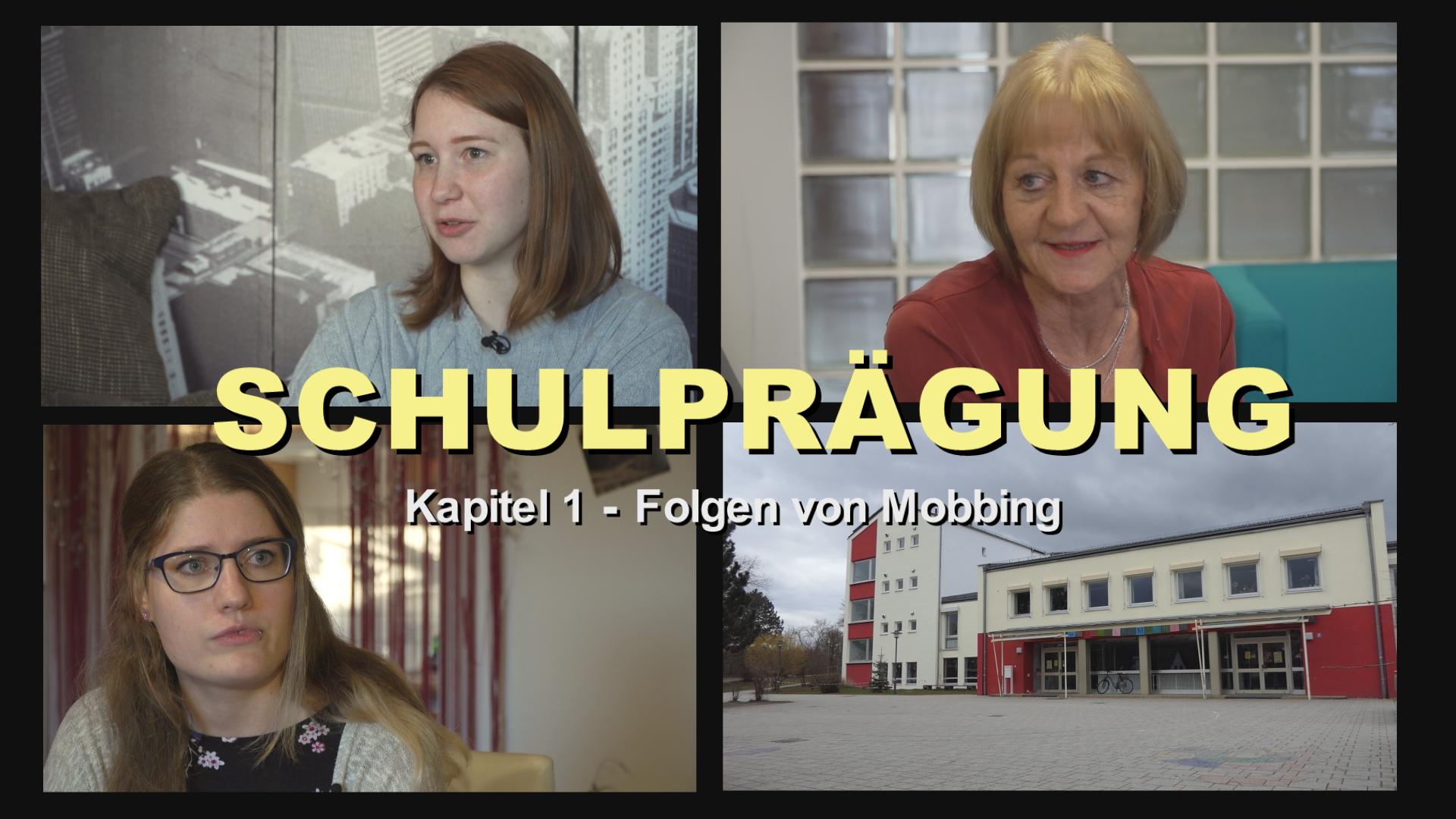 TV REPORTS - SCHULPRÄGUNG