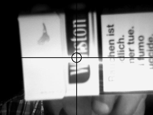 Kamerabild mit Graustufenfilter