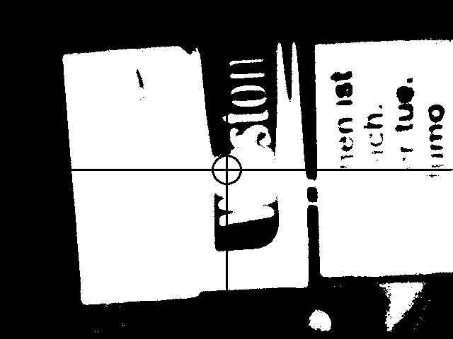 Kamerabild mit Schwarz / Weiss- Filter