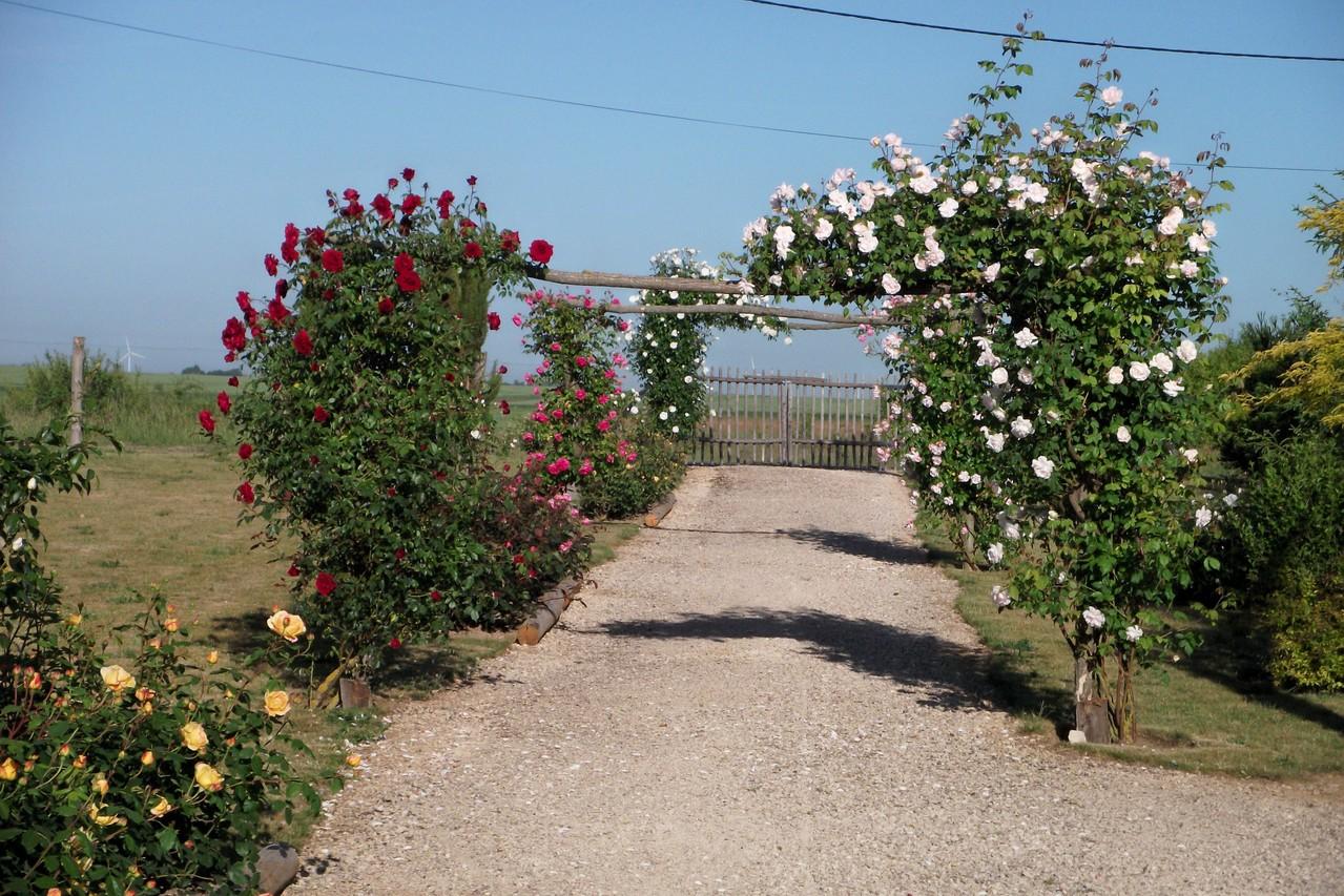 Le jardin entr e gratuite site le jardin des 4 saisons for Le jardin des 4 saisons albi
