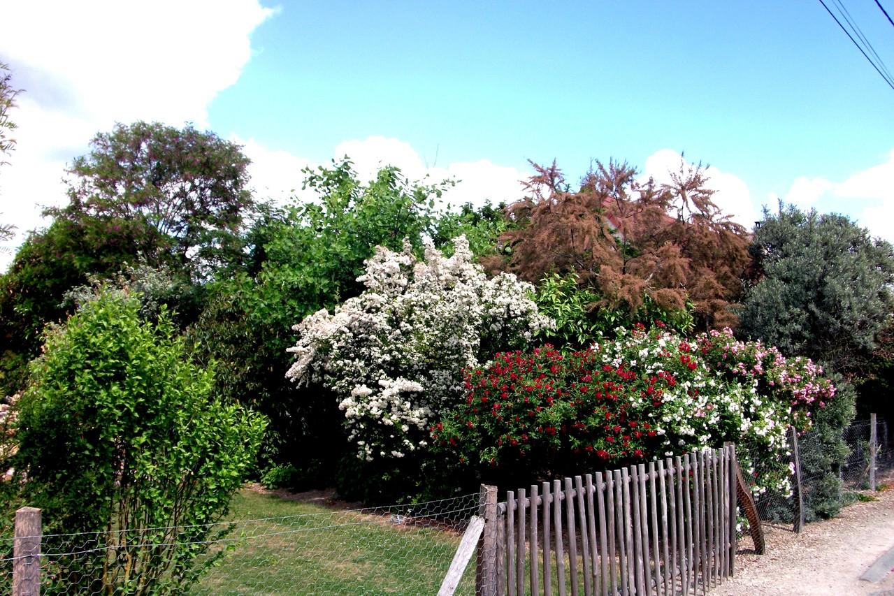 le jardin entr e gratuite site le jardin des 4 saisons ForLe Jardin Des 4 Saisons Pusignan