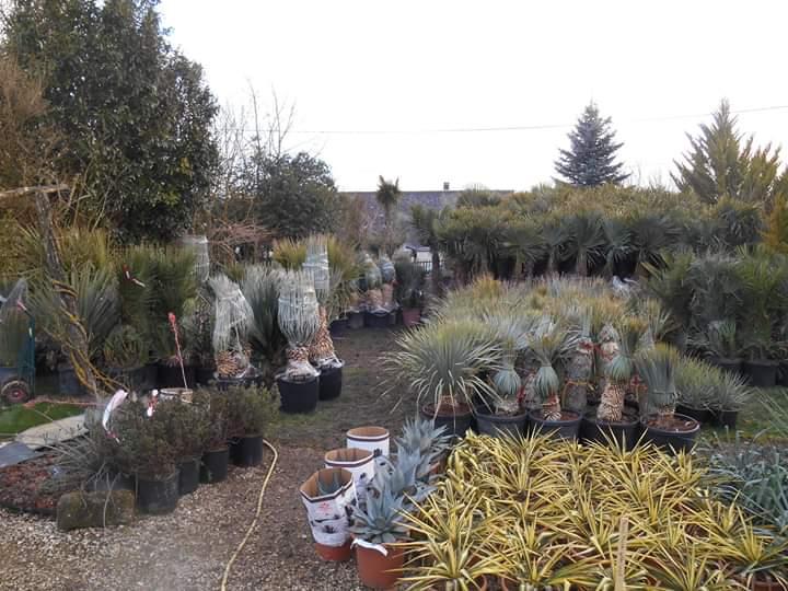 Visiter le jardin des 4 saisons p pini riste dans le for Jardin 4 saisons