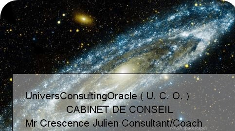 univers consulting oracle