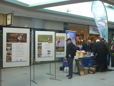 Der Infostand des LBV im Einkaufspark mit der Bekassinenausstellung