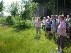 Rosmarie Wagenstaller erläutert den Teilnehmern der Wanderung die im Gebiet bereits durchgeführten Renaturierungsmaßnahmen (Bild: Knauf-Schöllhorn)