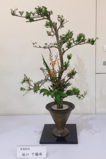 2014年6月 池田市花展
