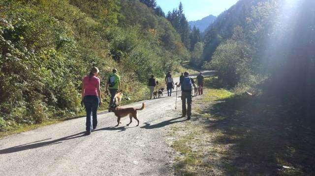 Wandern im Pinzgau