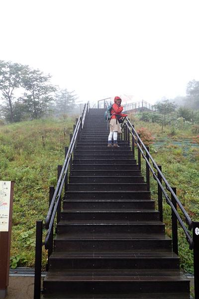 1445段の階段の登り口