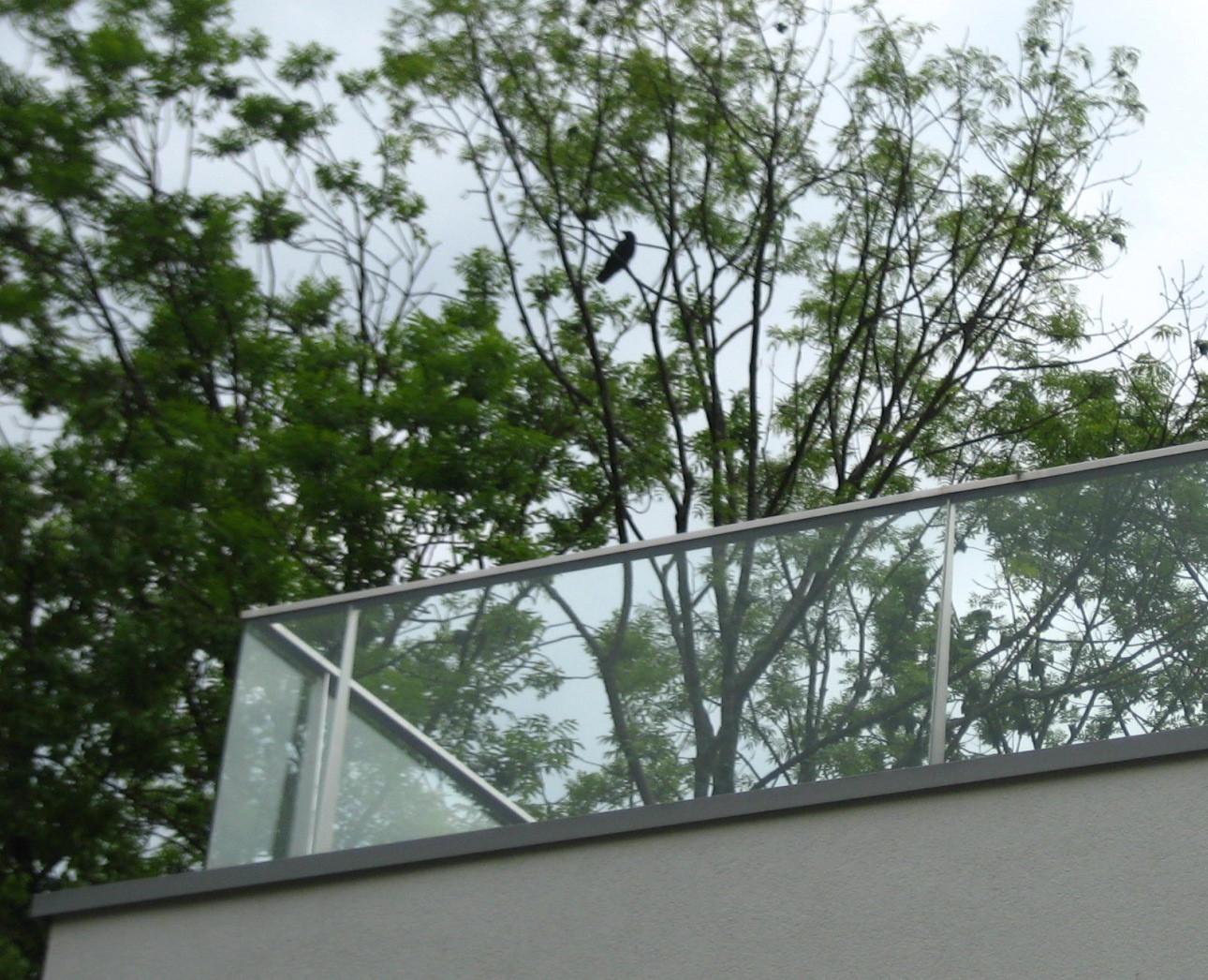 Balkonbrüstungen - für Vögel nicht sichtbar!