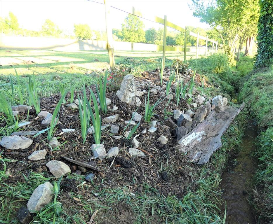 jardin japonais-la claie des landes