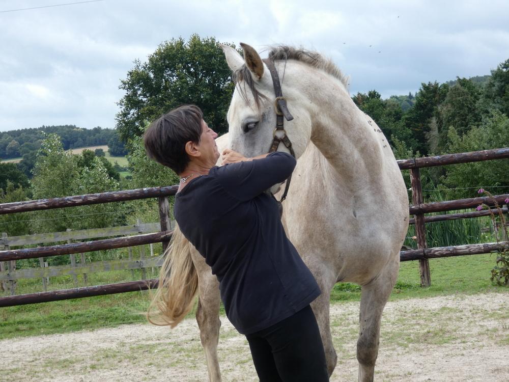 les chevaux du vent-la claie des landes