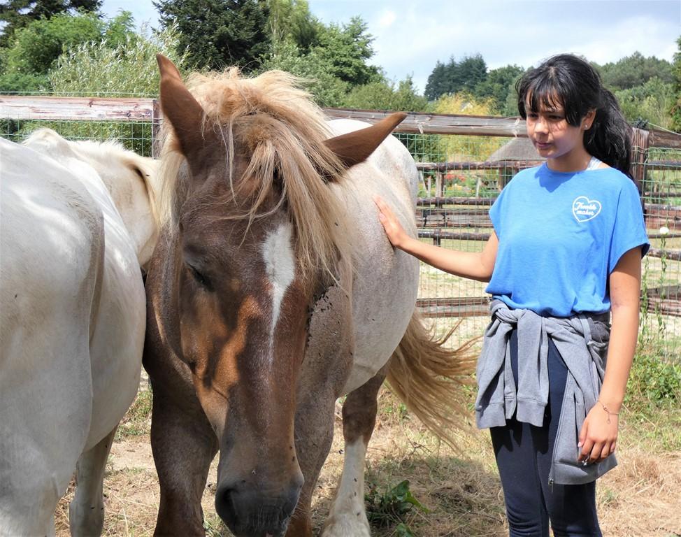 les chevaux du vent - la claie des landes