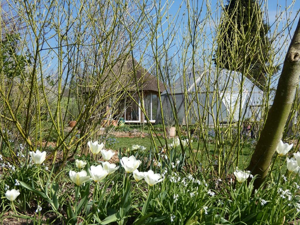 la pagode et le jardin japonais-la claie des landes