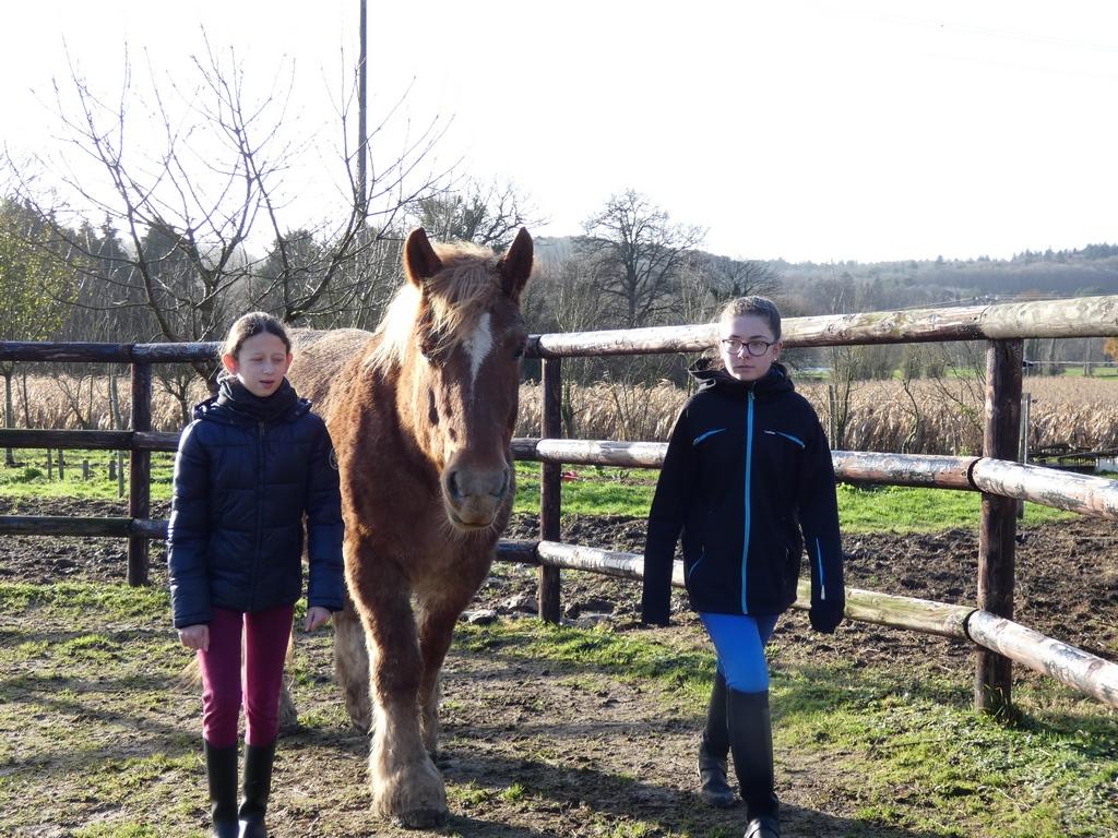 Accord et à corps avec le cheval