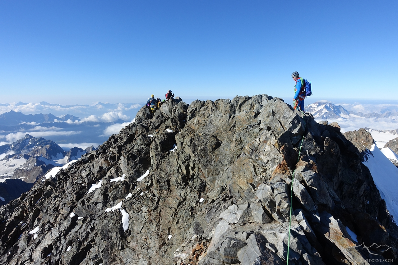 Bald am Gipfel des Piz Bernina