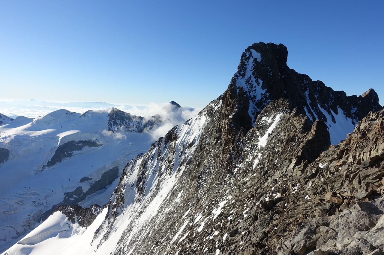 Sicht vom Piz Bianco zum Piz Bernina