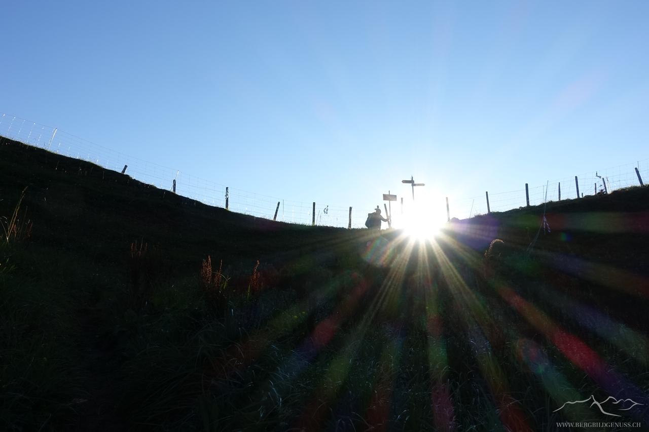Bald in der Sonne