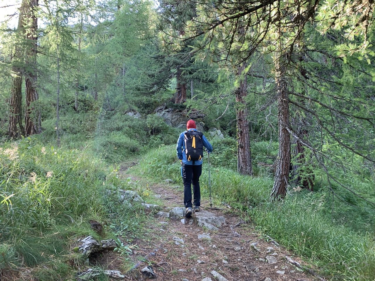 Auf dem schönen Wanderweg oberhalb von St. Moritz