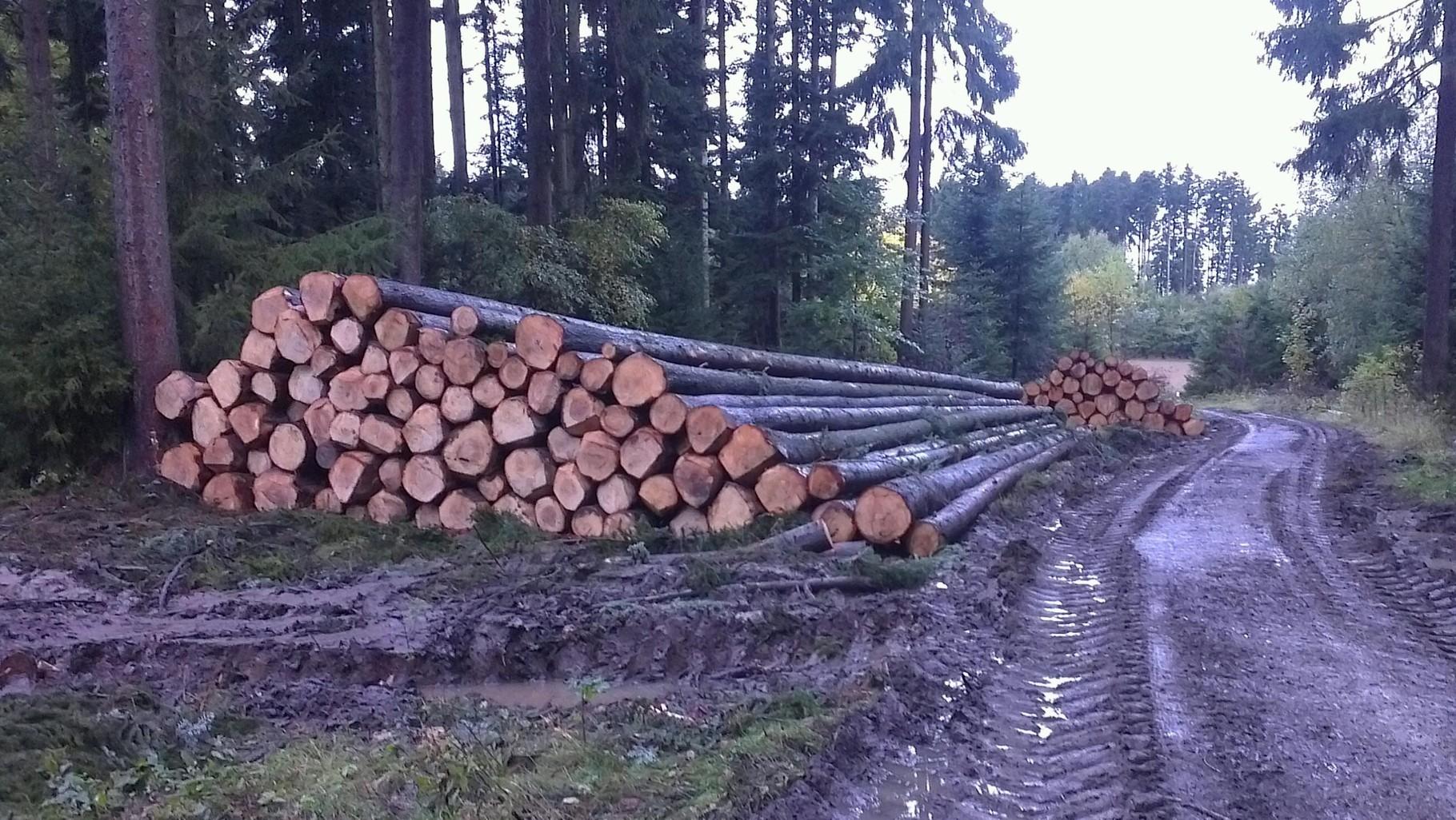 Stammholz abgepoltert am Fahrweg
