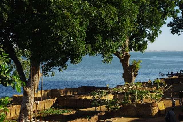 Niger et balanzans