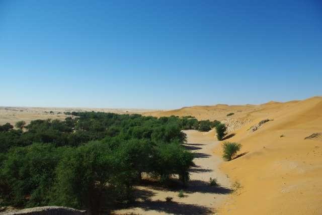 Frontière entre deux écosystèmes du désert de Namib