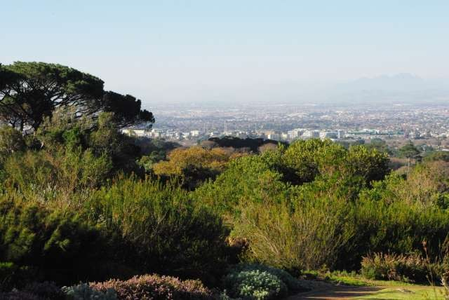 Jardin Botanique de Kirstenbosh