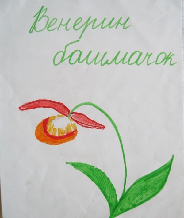 Белевич Алина СОШ №15 кл. 1Б