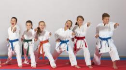 Bild: Karate für Kinder Meggen, organisiert durch das Frauennetz Meggen