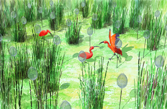 Concept Jardins Jardin 2011 ©