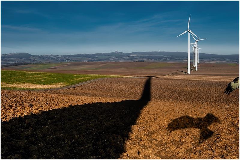 Windkraft Niederösterreich