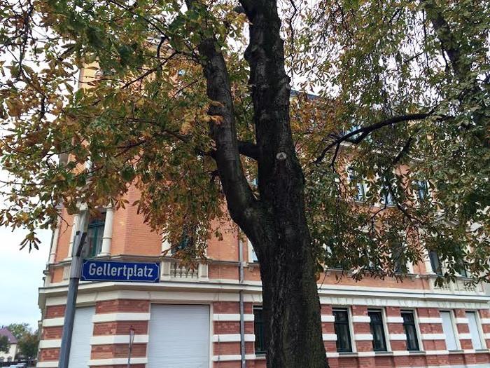 Romantisch am Gellertplatz gelegen