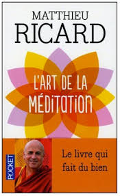 L'art de la Méditation - Mathieu Ricard