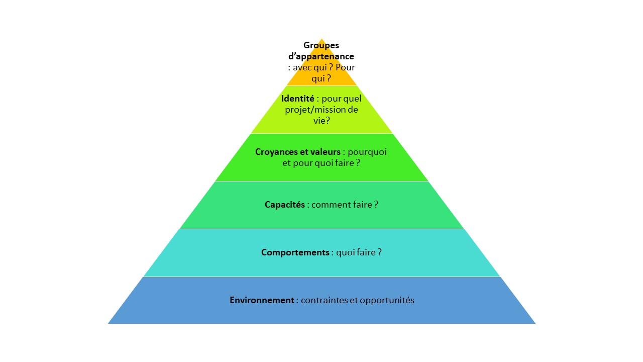 Les niveaux logiques en PNL