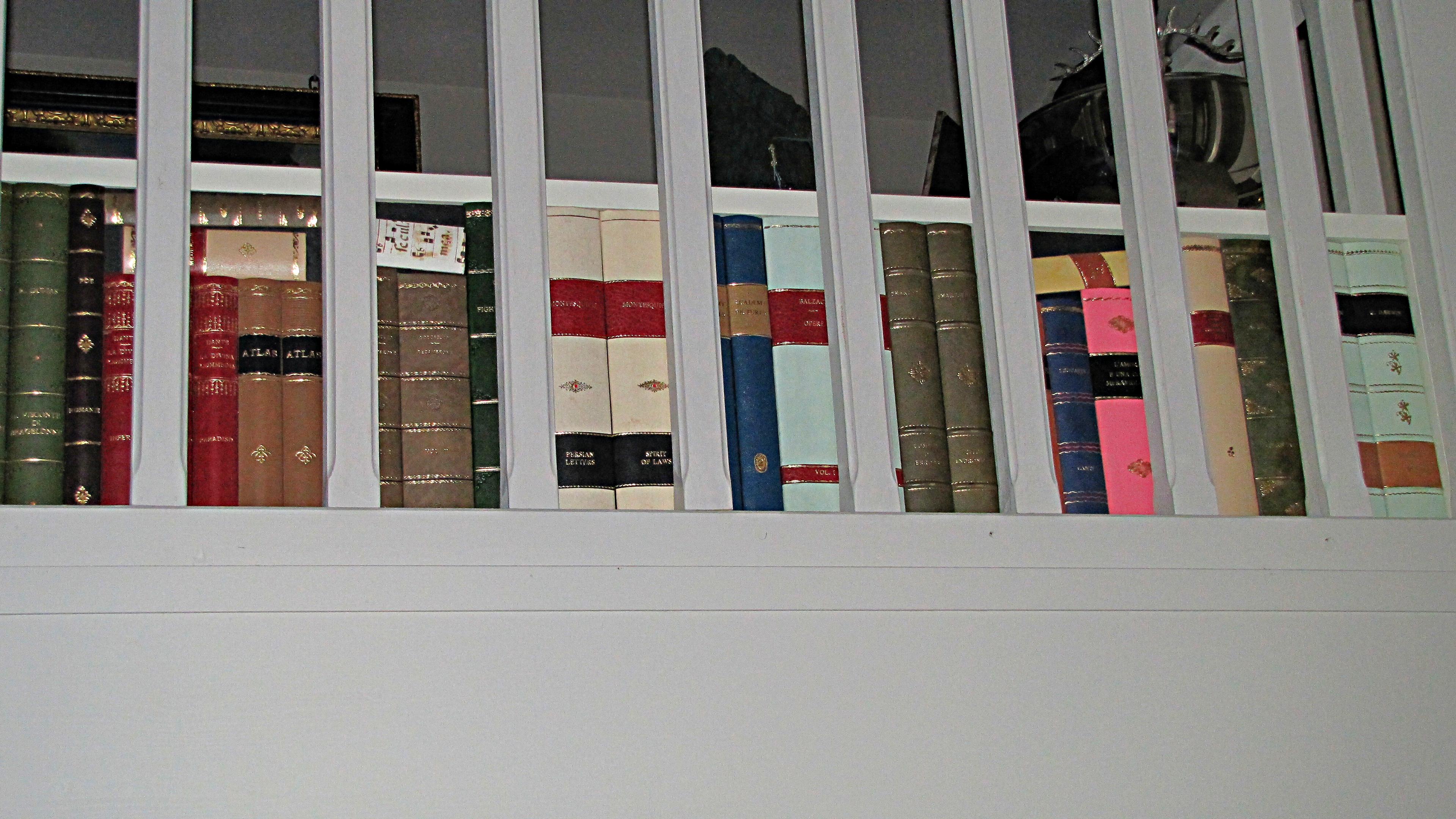 libri finti pelle milano conti borbone