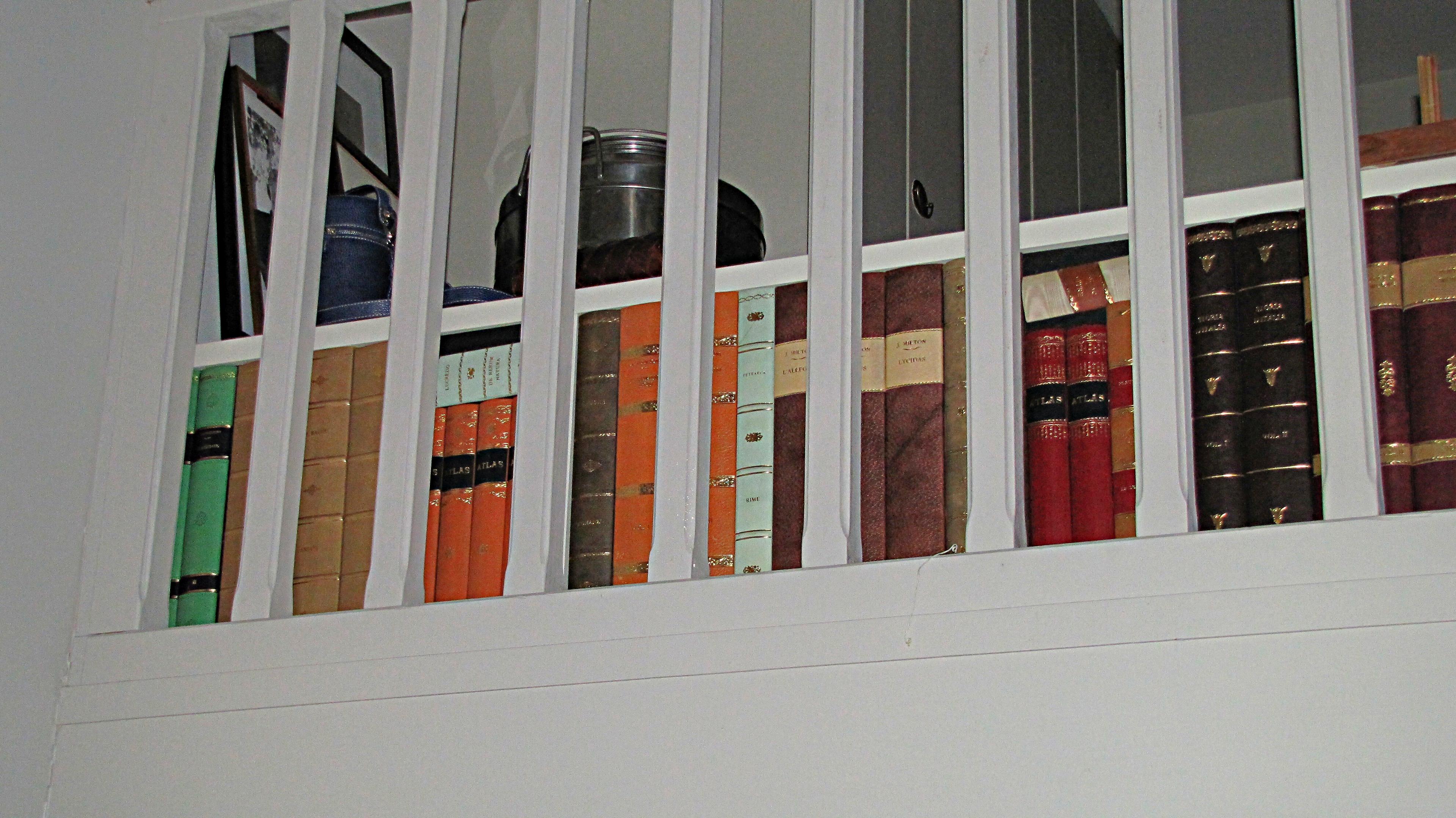 finti libri pelle casa privata milano
