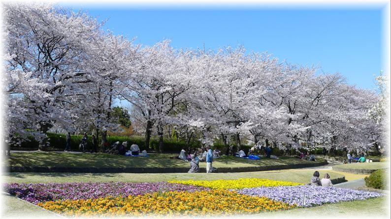 福岡市園芸公園